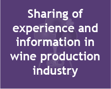 Sharing of  experience and  information in wine production industry (image)
