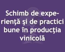 Schimb de experienţă şi de practici bune în producţia vinicolă (imagine)