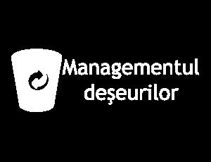 Managementul deşeurilor (pictură)